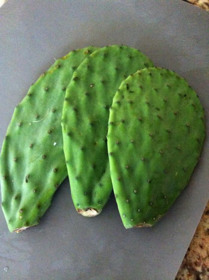 Los nopales son deliciosos y muy nutritivos. Son muy usados en la cocina típica mexicana.
