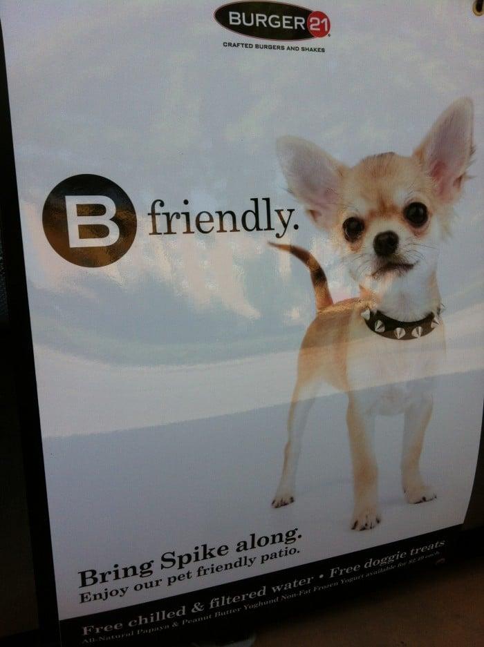 En este restaurante están bienvenidos los perritos. Les ofrecen agua limpia y hasta croquetas.