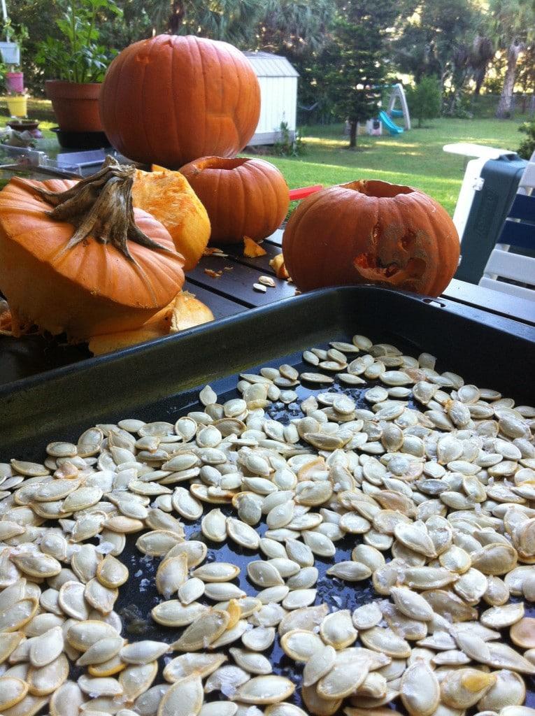 No tires las semillas de calabaza después de tallarla. Mejor cómetelas. Son super nutritivas.