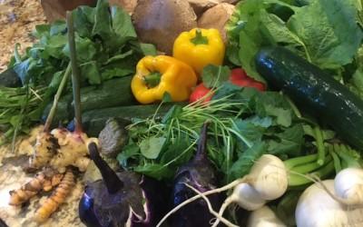 Transición fácil a una alimentación vegana