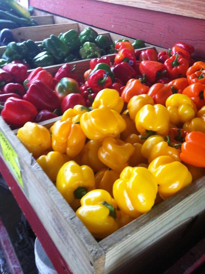 beneficios de una dieta basada en plantas, alimentacion vegetariana, alimentacion vegana, salud, ecología, bienestar animal
