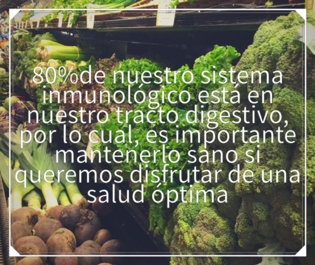 Los beneficios de los prebióticos y los probióticos