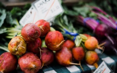 Recomendaciones Nutricionales para Veganos que Acaban de Empezar